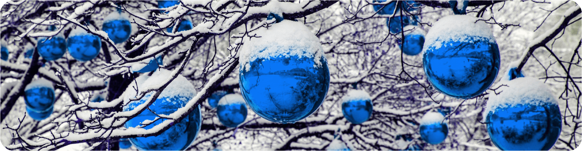 blue baubles covered with snow hanging from a tree