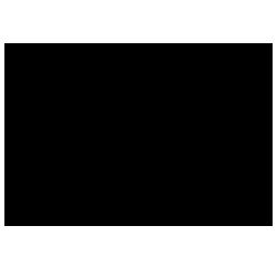 wandsworth council logo