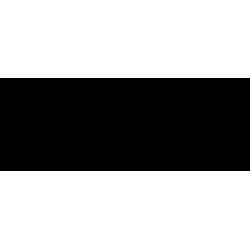city of westminster council logo